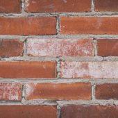 Antique St. Louis Bricks - Rustic Mortar